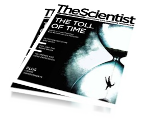 Beneficial Stats – The Scientist Magazine